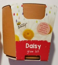 Buzzy Seeds Daisy Grow Kit Set Mini Pots