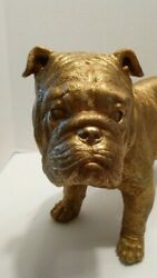 Large Gold Color English Bulldog Statue