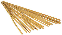 Hydrofarm Growt Hgbb6 - 6ft Long Bamboo Stakes, Natural Finish - Pack Of 25