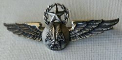 American Airlines Sterling Silver Flight Attendantwings Supervisor Pin Vintage