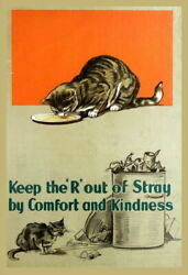 333076 Design Adopt A Hungry Stray Cat Print Poster Ca