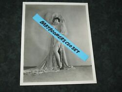 Press Photo Lena Linda Player 4 Cecil B. Demille Movie Actress Roaring 20s 1928