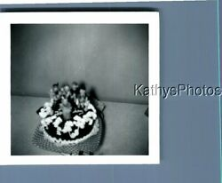Found Bandw Photo D_1745 View Of Small Cake On Table