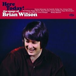 Here Today The Songs Of Brian Wilson [vinyl]