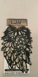 Whiting American Hen Saddle Black Laced White Fly Tying New Feathers Hackle