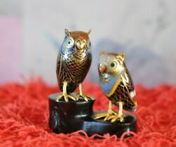 Pair Of Beautiful Vintage Chinese Cloisonné Miniature Owl Figurines With Stand