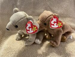 New Lot Of 2 Ty Beanie Baby Bears Almond And Pecan With Tag Errors