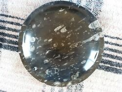 Large Polished Orthoceras Fossil Bowl With From Morocco