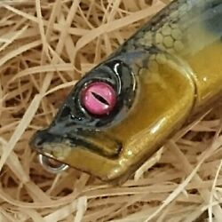 Megabass Woody Popx Limited Edition Popper New Bass Snake Head Pike 4 Yu0722