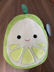 Kellytoy Squishmallows 2021 Fruit Collection 8 Leeland The Lime Plush Doll