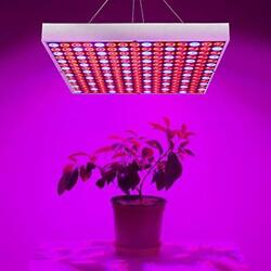 45w Led Grow Light For Indoor Plants Growing Lamp 225 Leds Red Blue Plant