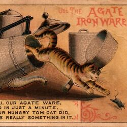 1880and039s C J Rumsey Ithaca New York Cat Chasing Mouse Agate Iron Ware Trade Card