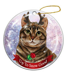 Holiday Pet Gifts Brown Tabby Cat Porcelain Christmas Ornament