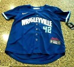 Youth Mlb Chicago Cubs Wrigleyville 2021 City Connect Jackie Robinson Jersey Lg