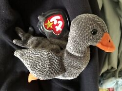 TY Plush Beanie Baby Honks the Goose 1999 Near Mint with Tags