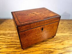 Attractive Late Georgian Tea Caddy With Conche Shell Inlay To Lid C1820