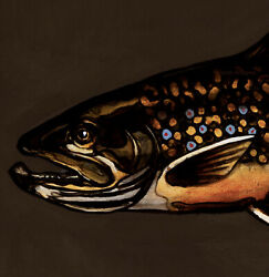 Trout Original Oil Painting Lure Fly Fishing Game Fish Art By David Andrews