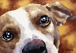JACK RUSSELL TERRIER Painting Dog ART 11 X 14 DJR
