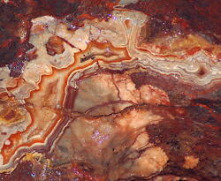 Red Crazy Lace Agate Lapidary Cabochon Rough 23.8 Lbs Great Colors /patterns