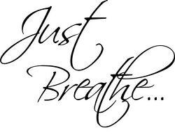 JUST BREATHE Wall Sticky Decal Vinyl Quote Lettering Words Home Decor 24quot;