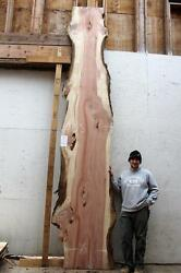 Salvaged Redwood Slab Countertop Live Edge Raw Wood Outdoor Bartop Table 4031a2