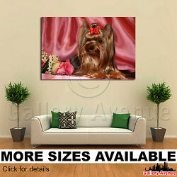Wall Art Canvas Picture Print - Yorkie Yorkshire Terrier M002 3.2