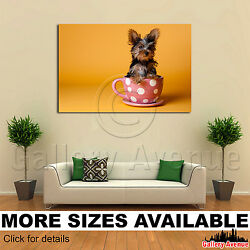 Wall Art Canvas Picture Print - Yorkie Yorkshire Terrier Puppy M001 3.2