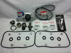 Genuine And Timing Belt Water Pump Gasket Kit For 05-07 Honda Odyssey Touring