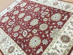 8and039.1 X 10and039.3 Red Beige Ziegler All Over Oriental Area Rug Hand Knotted Wool
