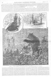 Hunters Experience In The Haunts Of The Grizzly - Wyoming - 1884 Antique Print