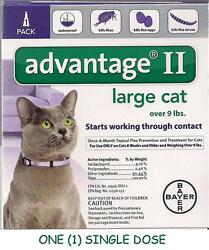 Advantage II Flea Control for Large Cat Over 9 lbs - ONE (1) DOSE