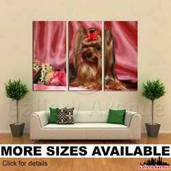 3 Panel Canvas Picture Print - Yorkie Yorkshire Terrier M002 3.2