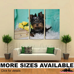3 Panel Canvas Picture Print - Yorkie Yorkshire Terrier Puppy M002 3.2