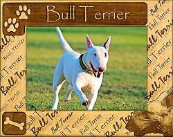 BULL TERRIER: ENGRAVED ALDERWOOD PICTURE FRAME #0040. Available in 4 sizes