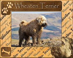 SOFT COATED WHEATEN TERRIER ENGRAVED ALDERWOOD PICTURE FRAME #0172 in 4 sizes