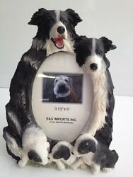Border Collie Dog 3x5 Picture Frame By E&S Imports ~NEW~