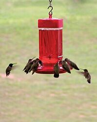 FIRST NATURE LARGE 32 oz HUMMINGBIRD FEEDER #3055 MADE IN THE USA dm