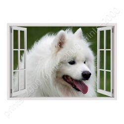 Samoyed Furry Dog by Fake 3D Window  Poster or Wall Sticker Decal  Wall art