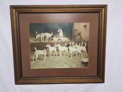 Eleven Smooth Fox Terriers