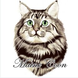 Maine Coon Cat Shirt Large Fluffy Cat Kitty Small - 5x Gentle Breed