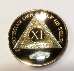 11 Year Aa Coin Black, Gold, Siver 1⅜ Traditional Size Recovery Chip Xi