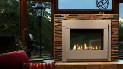 Twilight Modern IndoorOutdoor Gas Fireplace w Contemporary Front