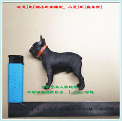French Bulldog for DID 80128S Chicago Gangerster III Deluxe Edition 1 6 Scale