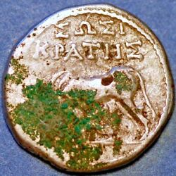 290-260 Bc Illyria Apollonia Curved Stellate Cow Right