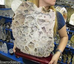 Rare * Tallest Deep Color * PINK AMETHYST * 11Kgs =24 Lbs 17inch * Free Shipping