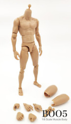 1 6 scale muscular body soft chest Narrow Shoulder for Hot Toys TTM19 Figure $27.00
