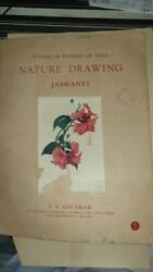 Old Vintage Indian Nature Drawings Color Paintings Prints Folder From India 1944