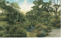 Pc14577 The Palm Dell. Hyde Park. London. 1906