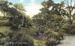 R115809 The Palm Dell. Hyde Park. London. 1906