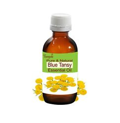 Blue Tansy Pure And Natural Undiluted Essential Oil Tanacetum Annuum By Bangota